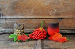Herbststillleben lizenzfreies stockfoto