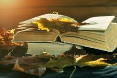 Herbststillleben - alte Bücher unter dem trockenen Herbstlaub und dem hellen Sonnenlicht Lizenzfreie Stockfotos