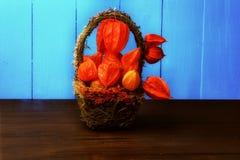 Herbststillleben auf einem Retro- rustikalen Physalis Art des hölzernen Hintergrundes in einem Korb Lizenzfreies Stockfoto