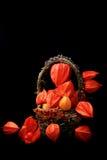 Herbststillleben auf einem Retro- rustikalen Physalis Art des schwarzen hölzernen Hintergrundes in einem Korb Stockfotografie