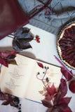 Herbststillleben in Burgunder-Farben Herbst- oder Winterkonzept, stockbild