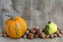 Herbststillleben des Kürbises, der Walnüsse und der Quitte auf einem Hintergrund von Leinwand Herbsternte Kürbise auf Leinwand Lizenzfreies Stockfoto