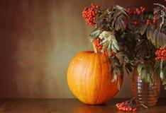 Herbststillleben mit einem Kürbis und Ebereschenbaumasten Lizenzfreies Stockbild