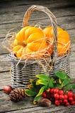 Herbststillleben mit frischen Kürbisen im Korb stockfotografie