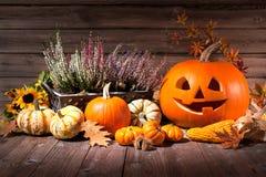 Herbststillleben mit Halloween-Kürbisen Lizenzfreies Stockfoto