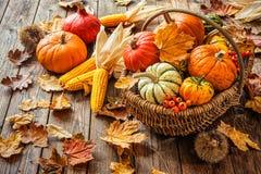 Herbststillleben mit Kürbisen, Maiskolben und Blättern Lizenzfreie Stockfotos