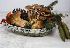 Herbststillleben mit Pilzen und Kegeln Lizenzfreies Stockfoto