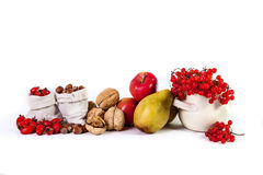 Herbststillleben von Fruchtapfel-Birnen nuts Viburnum lokalisierte O Stockfoto