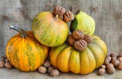 Herbststillleben von Kürbisen, von Walnüssen und von Quitte auf einem Hintergrund von Leinwand Stockfotos