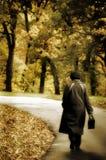 Herbststimmung Stockfotografie