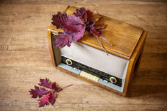 Herbststimmung. Musik Lizenzfreies Stockbild