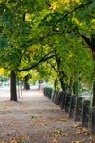 Herbststraße Lizenzfreies Stockfoto