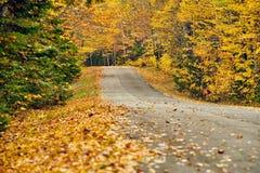 Herbststraße in Maine stockfoto