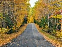 Herbststraße in Maine lizenzfreies stockfoto