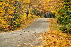 Herbststraße in Maine lizenzfreie stockfotos