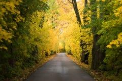 Herbststraße mit bunten Bäumen Stockfotografie