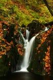 Herbststrom in den riesigen Bergen Stockfotografie