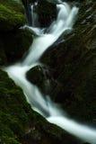 Herbststrom in den riesigen Bergen Stockbilder