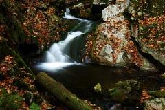 Herbststrom in den riesigen Bergen Stockbild