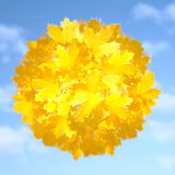 Herbstsymbol Stockfotografie