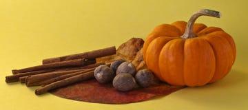 Herbstszene Stockfotos