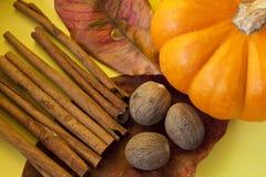 Herbstszene Stockbilder