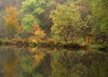 Herbstszene Lizenzfreies Stockfoto