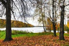 Herbstszene Lizenzfreie Stockfotografie
