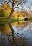 Herbstszene in einem niederländischen Park Lizenzfreies Stockfoto