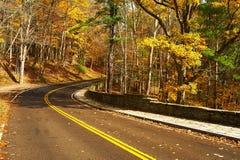 Herbstszene mit Straße im Wald stockbild