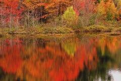 Herbstszene reflektiert im See Stockfotos