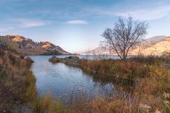 Herbstszene von See und von Bergen mit Herbstgräsern und -blättern mit warmem Licht des Sonnenuntergangs stockbild