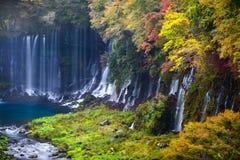 Herbstszene von Shiraito-Wasserfall Lizenzfreies Stockbild