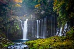 Herbstszene von Shiraito-Wasserfall Stockfotos