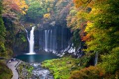 Herbstszene von Shiraito-Wasserfall Stockbilder