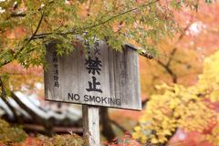 Herbsttönungen in Japan lizenzfreies stockfoto