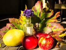 Herbsttabellenanordnung Lizenzfreies Stockfoto