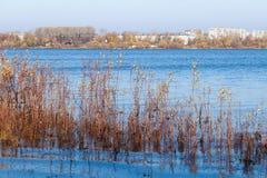 Herbsttag in Arkhangelsk Ansicht des Flusses Nord-Hafen Dvina und des Flusses in Arkhangelsk stockbilder