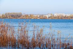 Herbsttag in Arkhangelsk Ansicht des Flusses Nord-Hafen Dvina und des Flusses in Arkhangelsk stockfoto