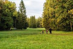 Herbsttag im Park Pavlovca Stockfotos
