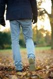 Am Herbsttag weg draußen gehen stockfotos