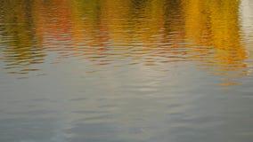 Herbsttageslichtlandschaft reflektiert im Wasser stock video footage