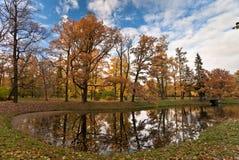Herbstteich im Park stockfotografie