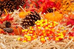 Herbstthema mit Süßigkeit Stockfotografie