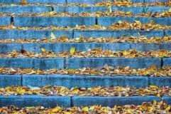 Herbsttreppe lizenzfreies stockbild