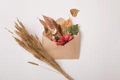 Herbstumschlag mit Blättern und Weizen Stockfotos