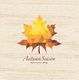 Herbstvektorblätter Stockbild
