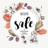 Herbstvektorweinlese-Baumwollblume, Verkaufskarte Stockbilder