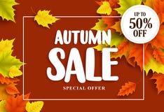Herbstverkaufsvektor-Fahnendesign mit Typografie und bunten Ahornbaumblättern stock abbildung
