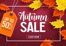 Herbstverkaufsvektor-Fahnenschablone mit Rabatttext und Ahornblattelementen lizenzfreie abbildung